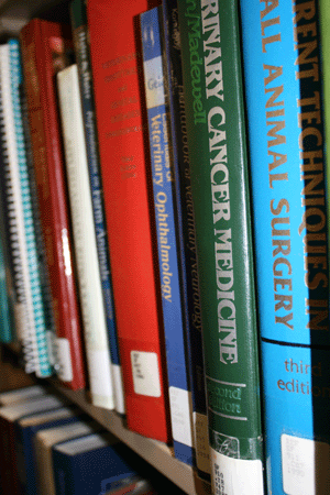 Books with call numbers on a library shelf
