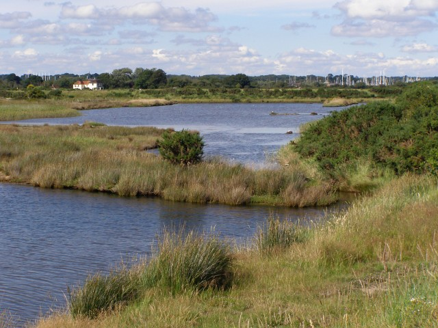 Brackish lagoons north of Moses Dock, Oxey Marsh - geograph.org.uk - 505321
