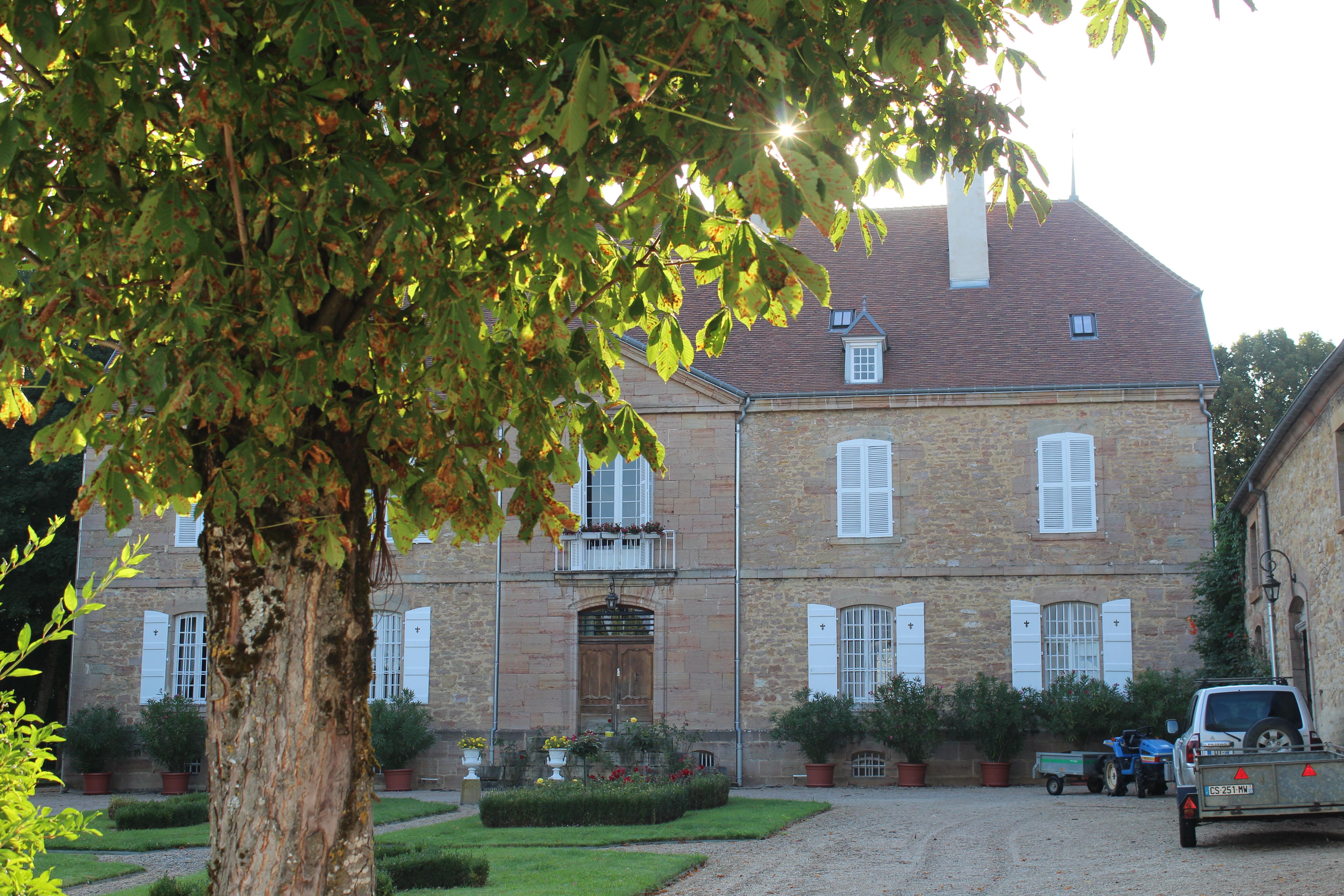 Château de Cousance