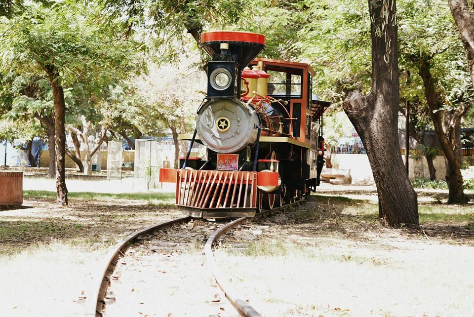 Toy train in Chambal garden kota