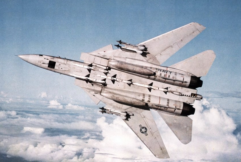 Jet Fighter Cat Gif