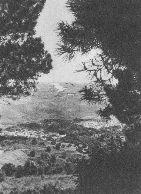fundacion el monte: