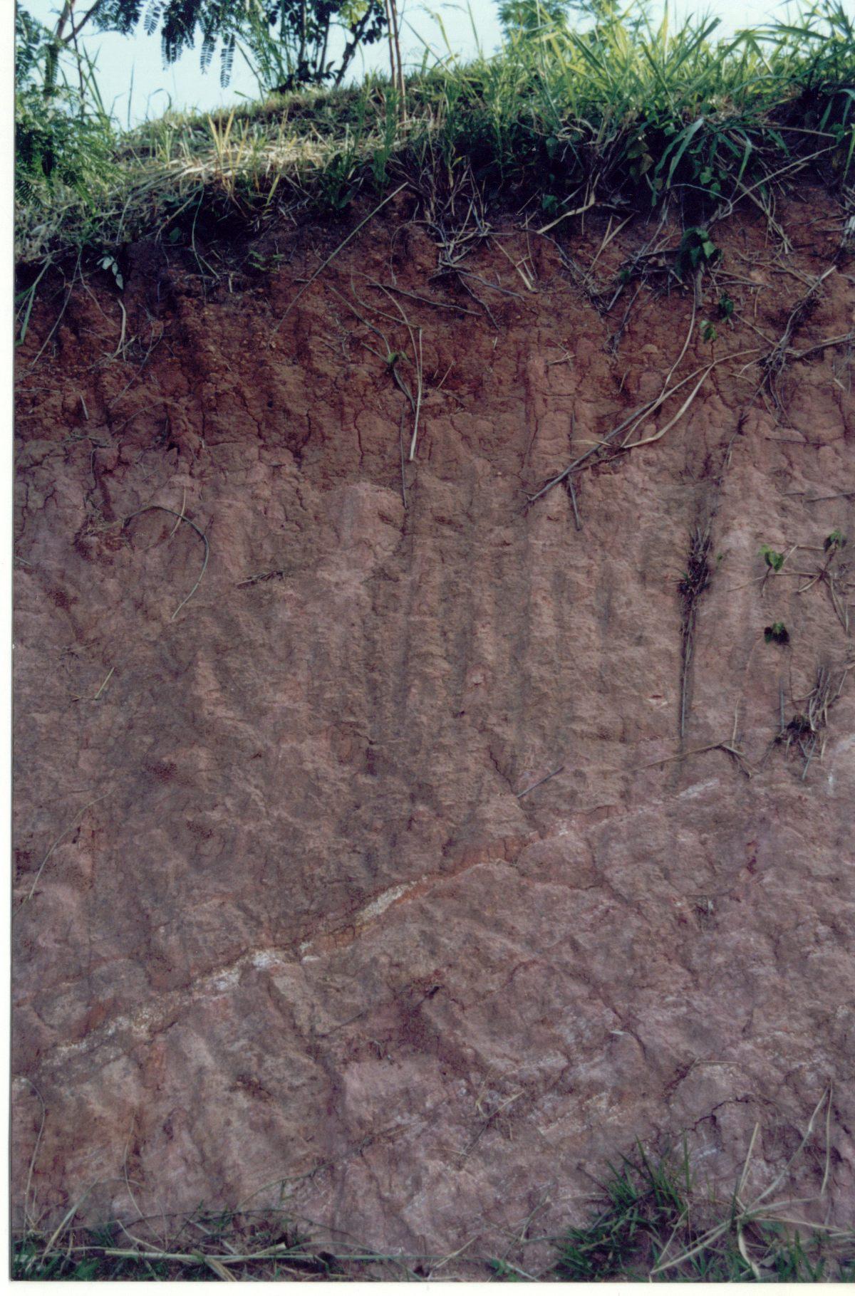 File granulite wikimedia commons for Uses of soil wikipedia