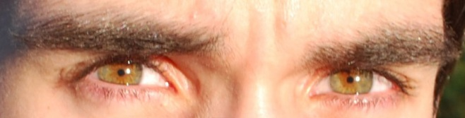File:Hazel green eyes close up.jpg