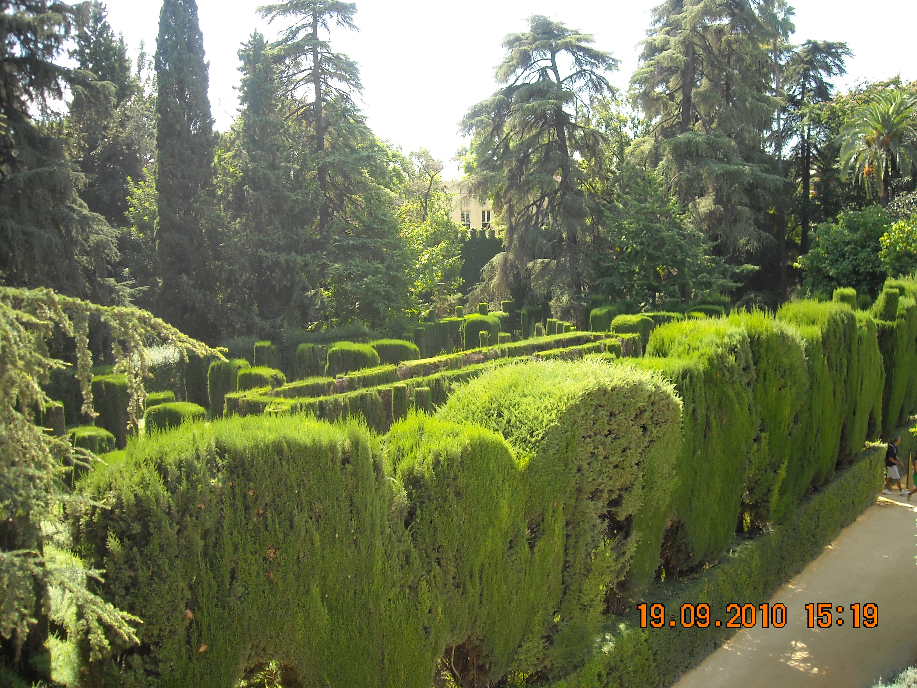 File laberinto en jard n reales alc wikimedia for Jardin laberinto