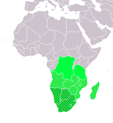 Southern Africa (UN subregion) geographic, including above Southern African Development Community (SADC) LocationSouthernAfrica.png