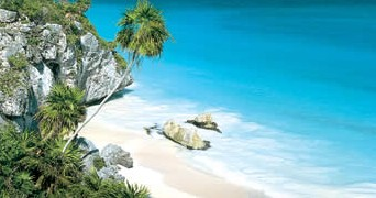 Image result for Riviera Maya