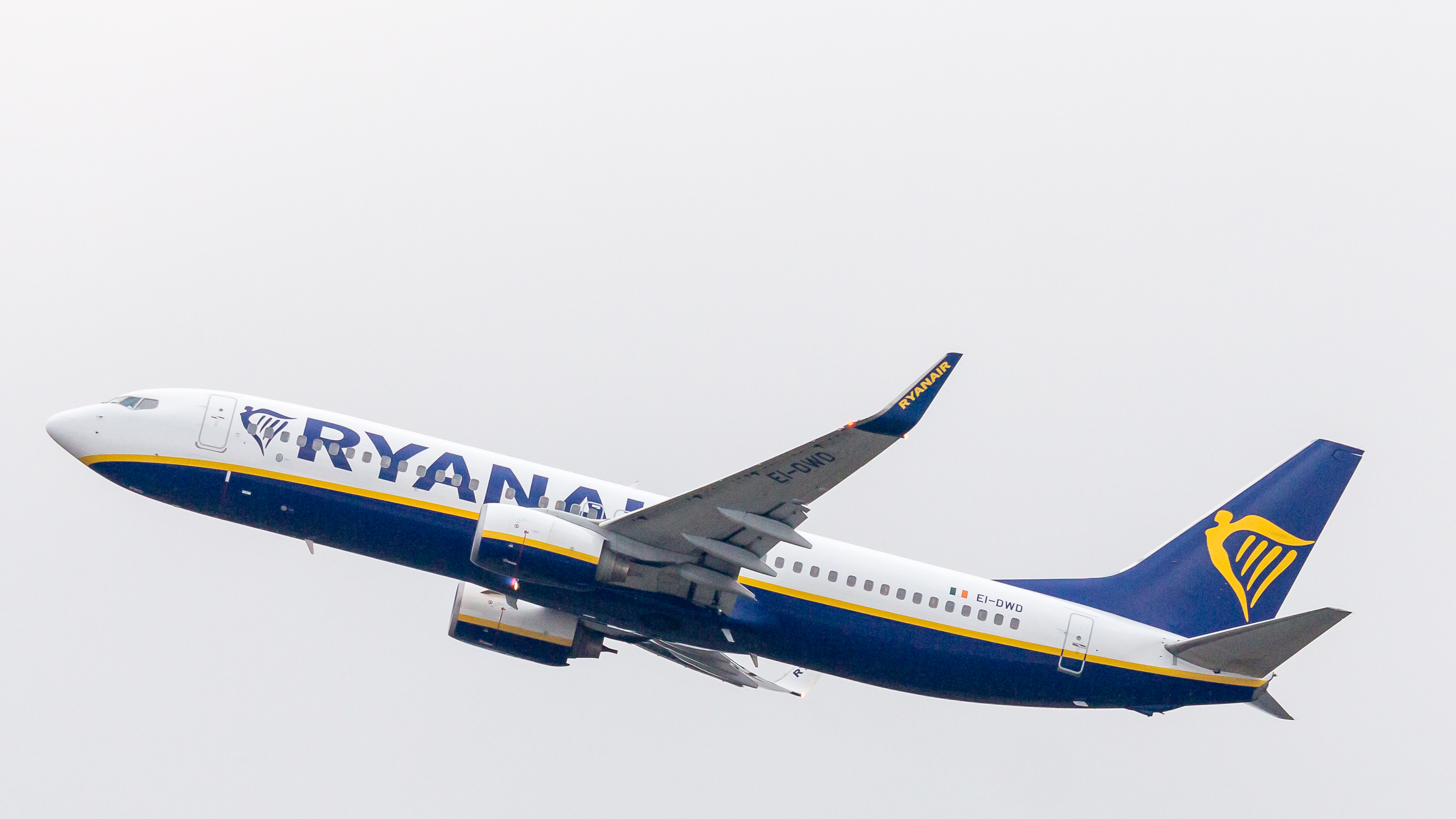 https://upload.wikimedia.org/wikipedia/commons/f/f5/Ryanair%2C_Boeing_737-800%2C_EI-DWD%2C_Airport_Cologne_Bonn-7175.jpg