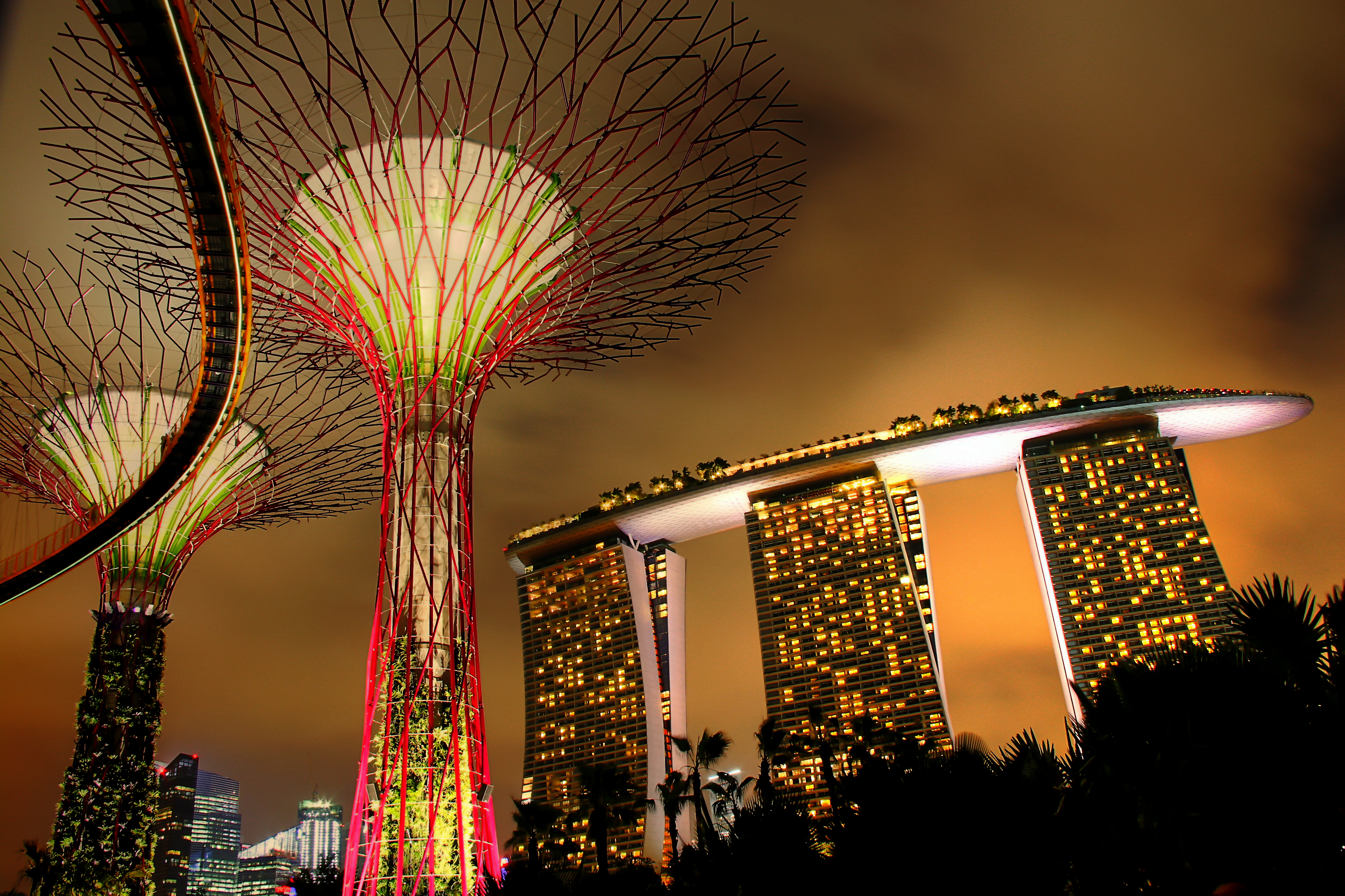 filesupertree grove at gardens by the bay and marina bay sands hotel singapore - Garden By The Bay Marina Bay Sands