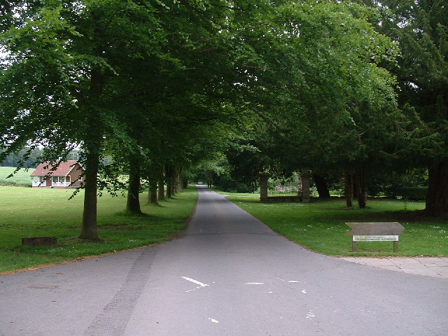 The Avenue - Shobdon - geograph.org.uk - 15903