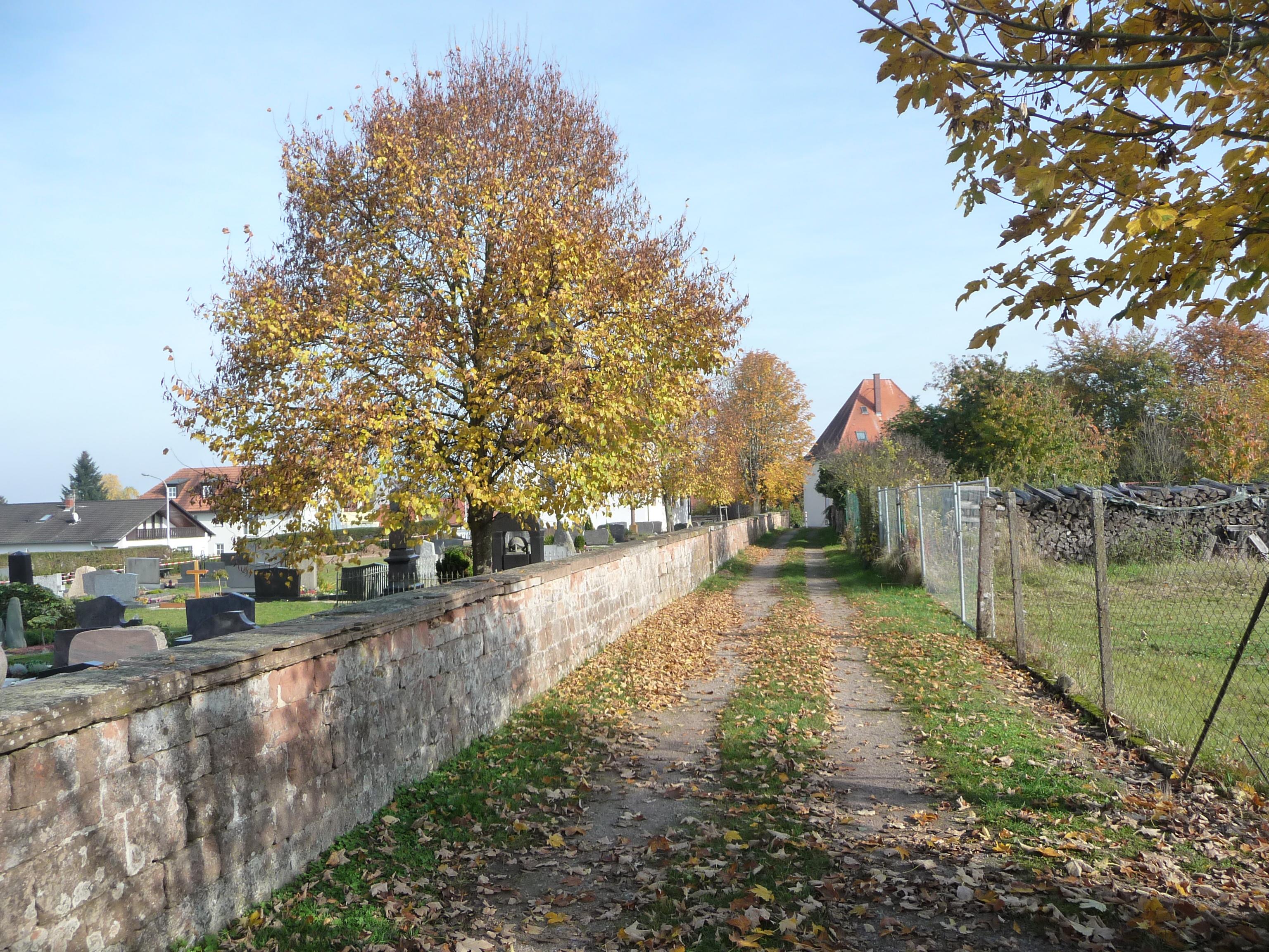 Winden Pfalz