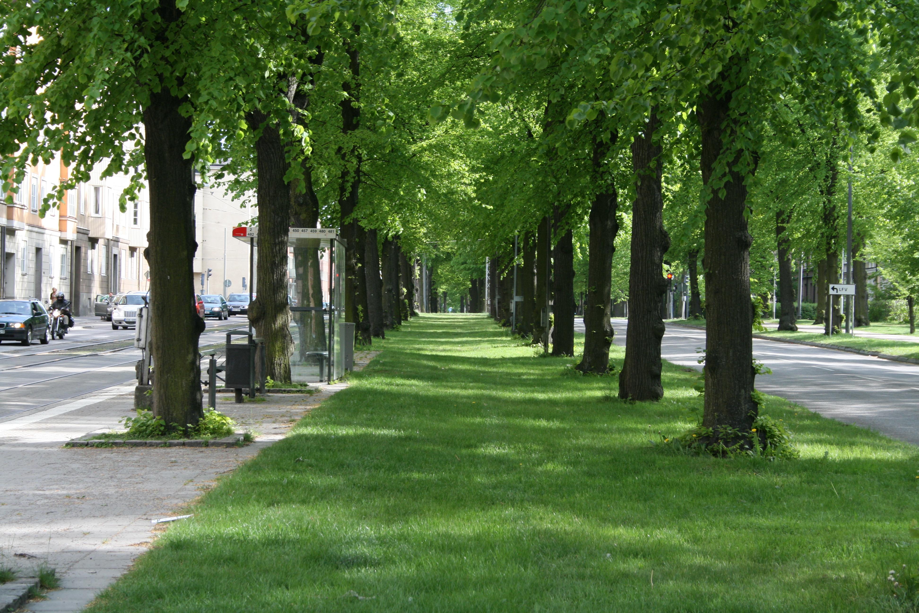 östra promenaden norrköping