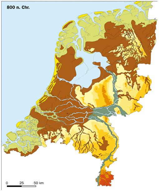 trombosestichting nederland