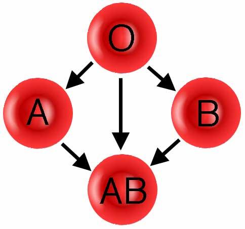 ABO donation path