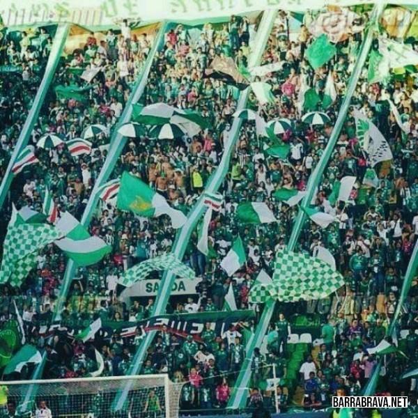 En el estadio - 3 9
