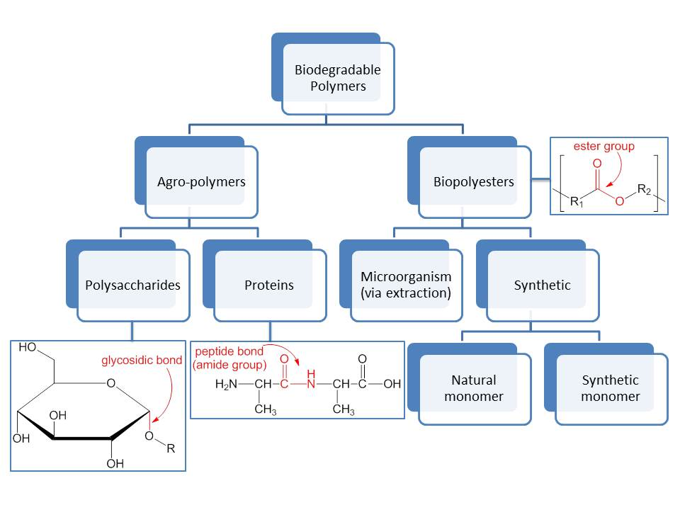 Flow Charts Templates: Biodegradable Polymers Flow Chart 2.jpg - Wikimedia Commons,Chart