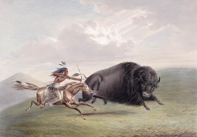 Buffalo Hunt.jpg