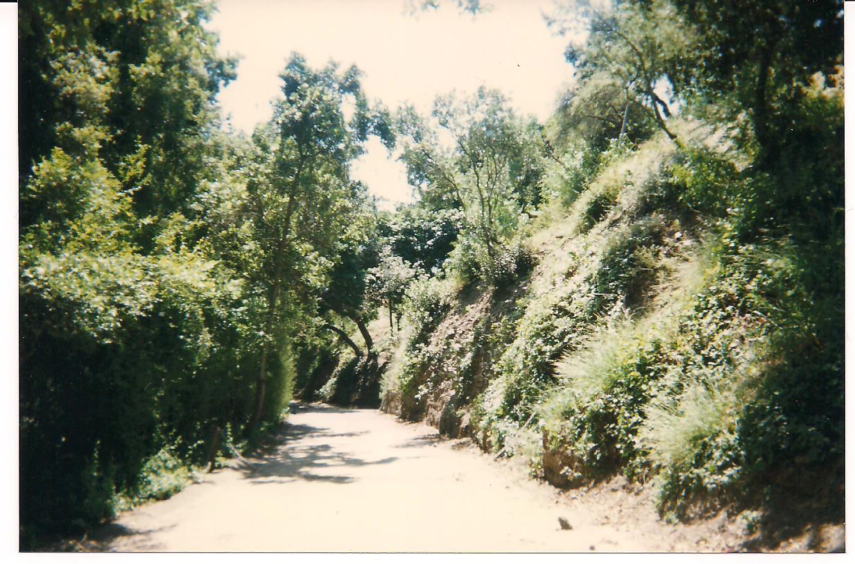 Benedict Drive Los Angeles Property Records Wilson