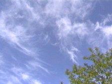Cirrus (nuage)