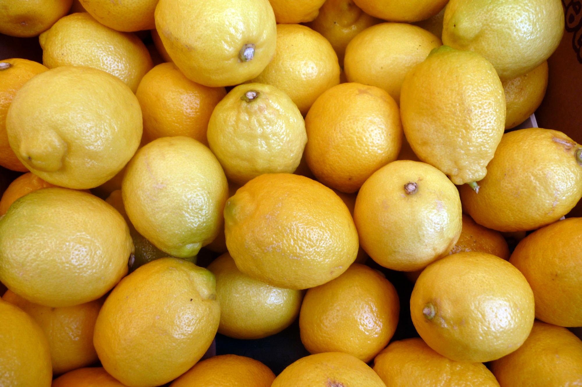 """Résultat de recherche d'images pour """"le citron"""""""