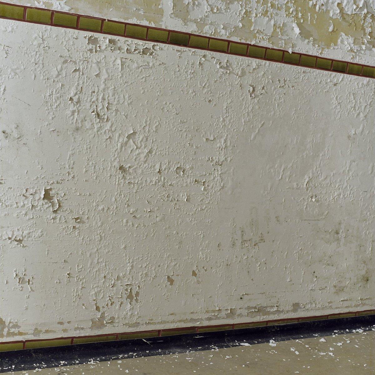 File detail het afbladderen van de verf op de muren kampen 20420305 wikimedia - Verf muren van ...