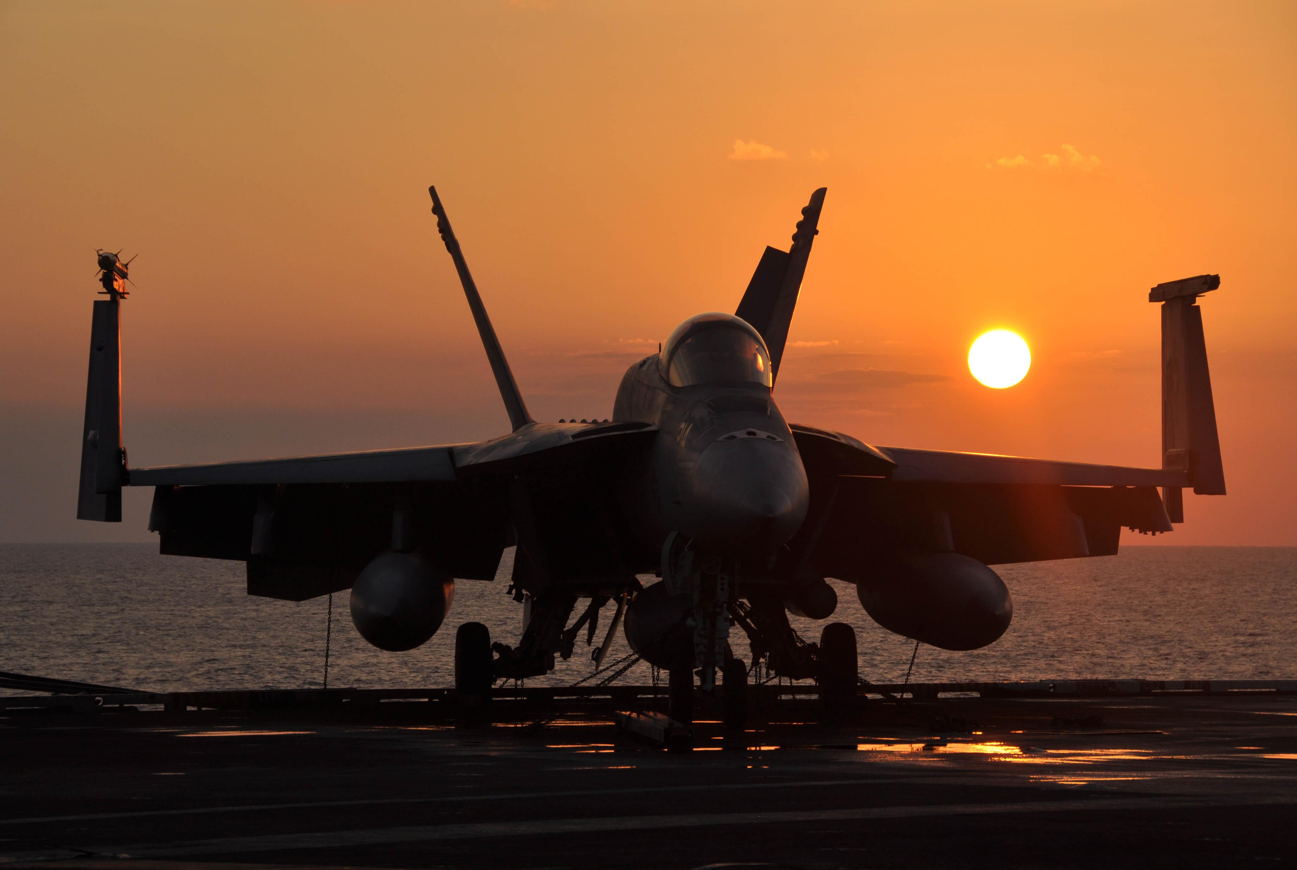 http://upload.wikimedia.org/wikipedia/commons/f/f6/F_A-18E_Super_Hornet_aircraft.jpg