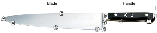 Kitchen Knife Anatomy.png