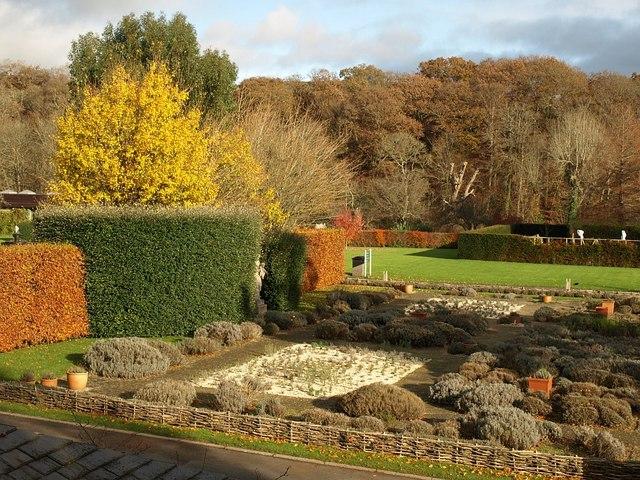 Lavender Garden, Buckfast Abbey - geograph.org.uk - 1056754