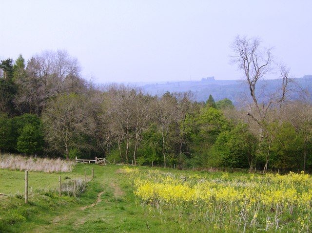 Looking north to Chedworth Woods - geograph.org.uk - 447762