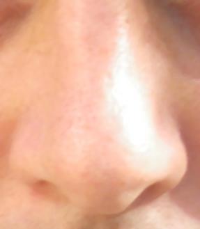 File:Nose.jpg