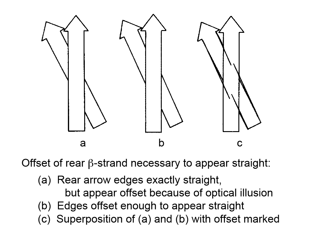 Beta Ribbon Offset Illusion