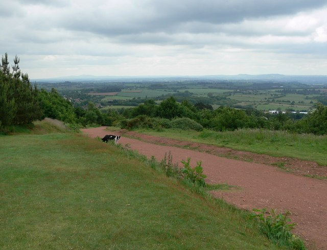 Path on the Clent Hills - geograph.org.uk - 850397