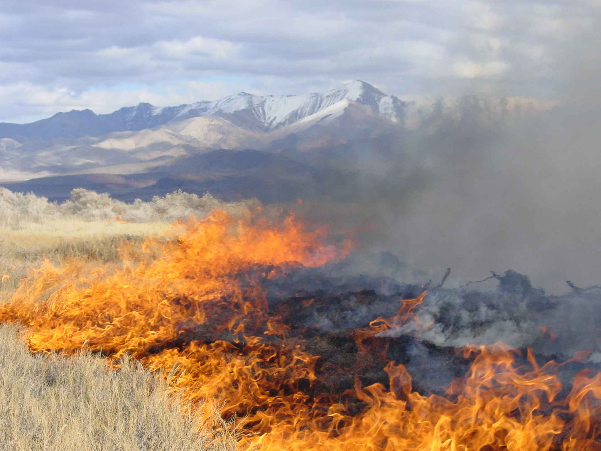 Prescribed Burns On Private Property