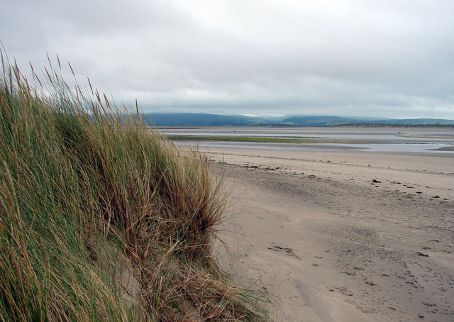 Sand Dunes at Aberdovey - geograph.org.uk - 199941