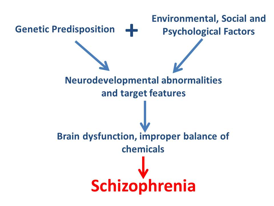 symptoms of schizophrenia essay