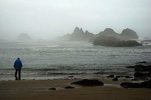 File Seal Rock Area Lincoln County Oregon Scenic Images Lincda0050
