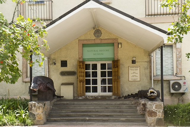 National History Museum - Things to do in the Seychelles
