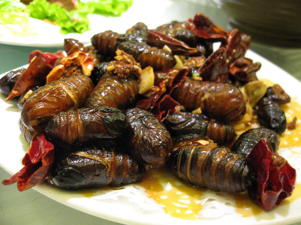 FILE NAME: Silkworm_pupae_to_eat.jpg CAPTIONS IN DIFFERENT LANGUAGES: EN: Silkworm pupae dishes - credits to Blueberry87 SV: Stekta silkesmaskpuppor - fotokredit till Blueberry87 LINK TO SOURCE: https://en.wikipedia.org/wiki/Bombyx_mori#/media/File:Silkworm_pupae_to_eat.jpg IMAGE ADDRESS: https://upload.wikimedia.org/wikipedia/commons/f/f6/Silkworm_pupae_to_eat.jpg DOWNLOAD PLATFORM: https://en.wikipedia.org/ TITLE: Silkworm pupae dishes KEYWORDS: silkworm pupae, Party Bugs, Bug Bazaar AUTHOR: Blueberry87 - https://www.flickr.com/photos/blueberry87/ LINK TO AUTHOR'S PAGE: https://www.flickr.com/photos/blueberry87/ COMMENTS: COPYRIGHT: Blueberry87 - CC BY 2.0 THIS INFORMATION WAS RECORDED ON 2.4.2021.