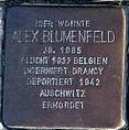 StolpersteinMagdeburgBlumenfeldAlex.jpg