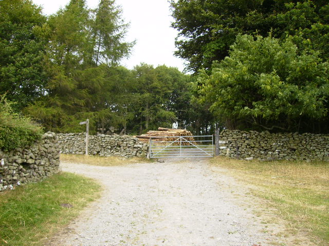 The track near Mount Barnard on The Cistercian Way - geograph.org.uk - 210412