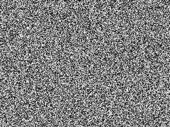 "A ""white noise"" image White-noise-mv255-240x180.png"