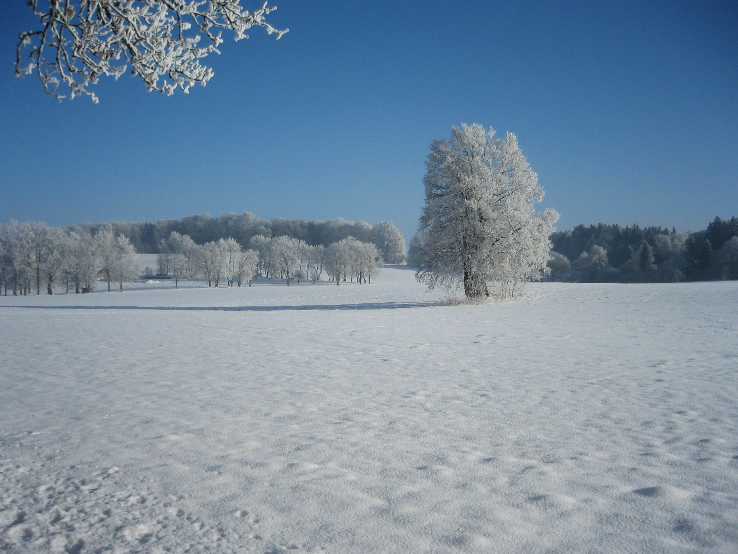 File winter landscape in oberbayern bavaria jpg for Landscape pictures