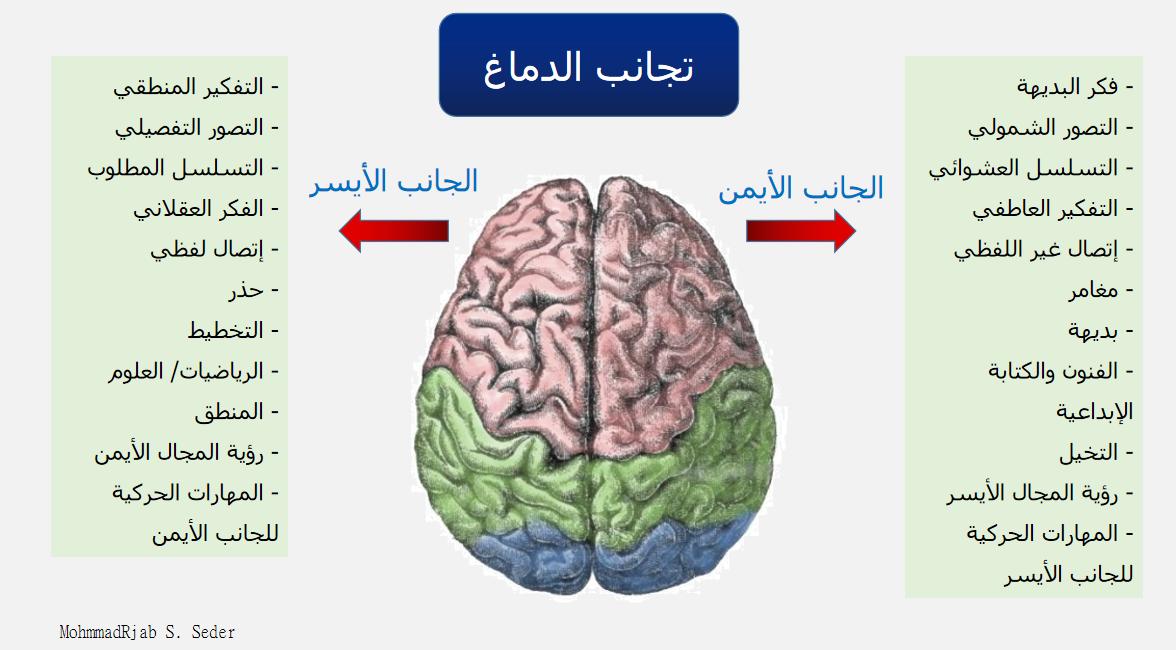 لا تناظر لا تناسق الدماغ ويكيبيديا