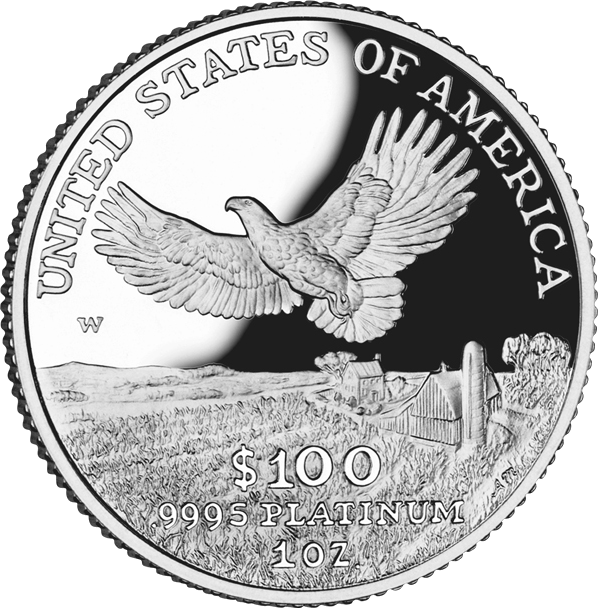 reverse side of the 2000 American Platinum Eagle proof coin