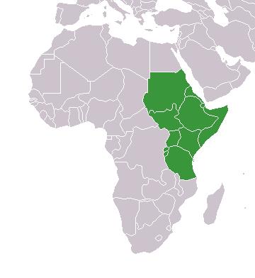 CECAFA - Wikipedia