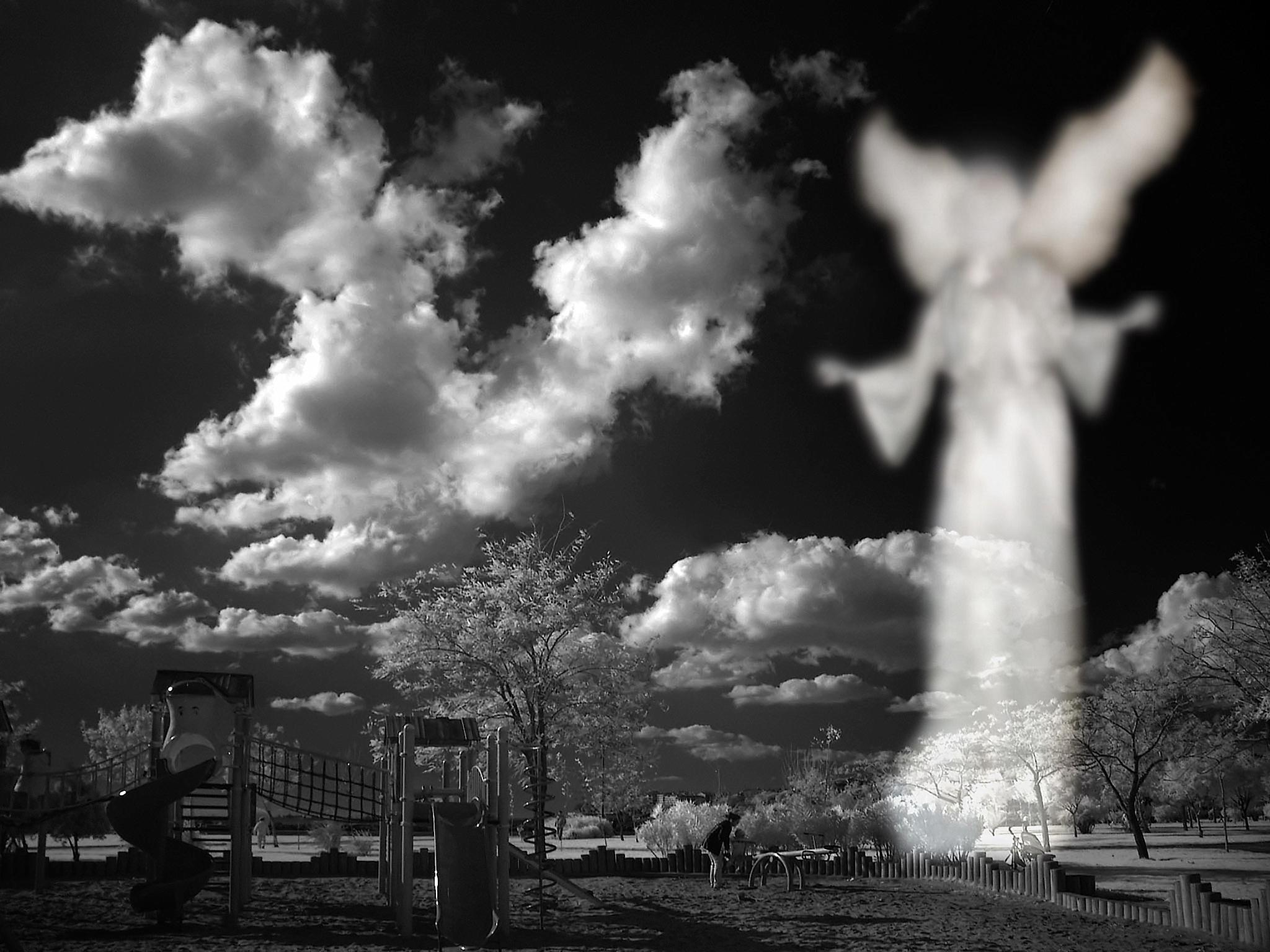 Angel, Newit Dilmen