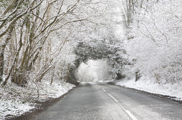 File:Belmore Lane climbing the hill through High Wood after April snow - geograph.org.uk - 752483.jpg