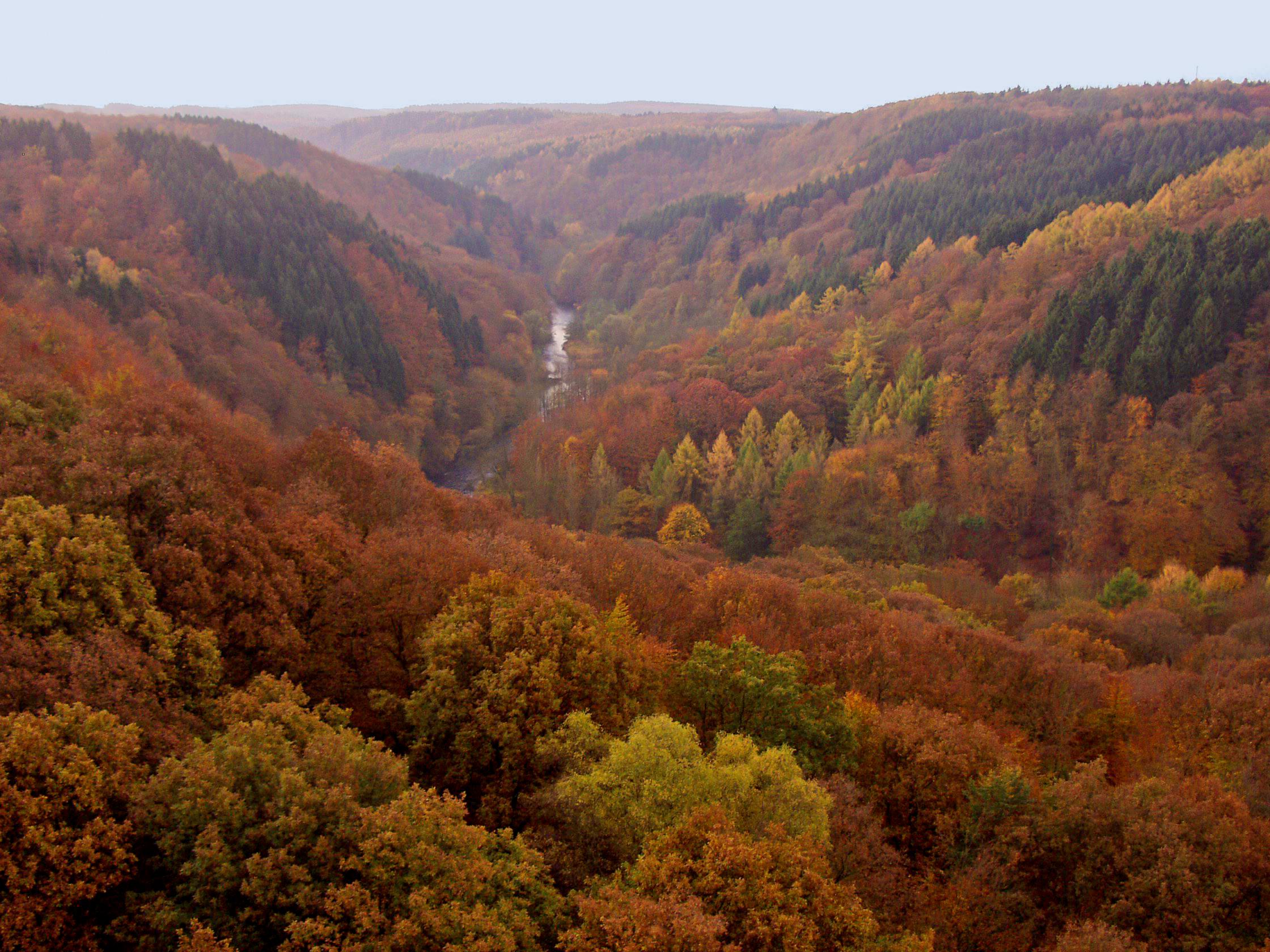 Долина реки Вуппер.