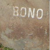 Bono rock.jpg