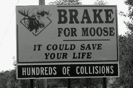 Break for moose sign